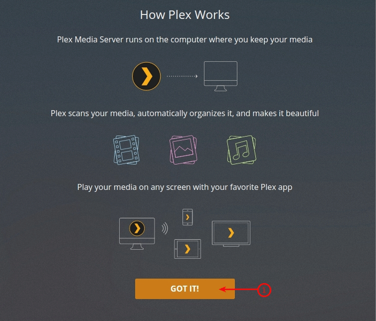 Shared seedbox plex configuration